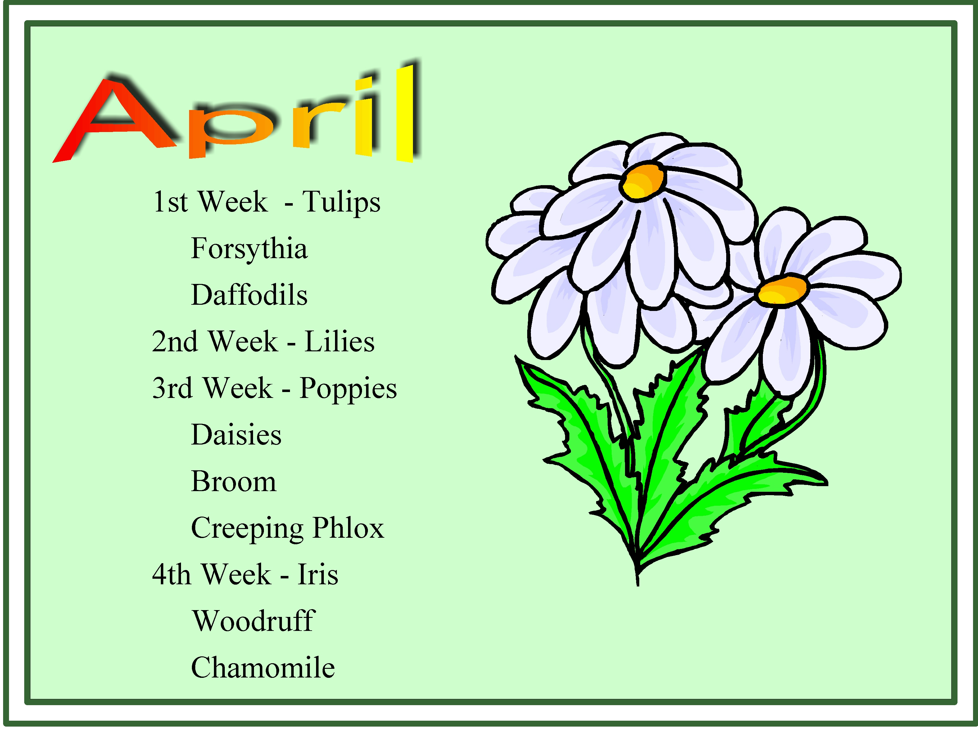 Herbs Chart Monthly Blooms Pebble Hall Wildflowers